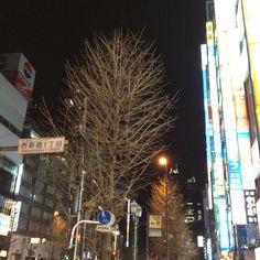 Shinjyuku,Japan.