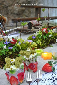 Frühlingstagundnachtgleiche - Perfekte Harmonie, gibt´s im Leben fast nie!? Table Decorations, Plants, Home Decor, Light And Shadow, Nature, Life, Decoration Home, Room Decor, Plant