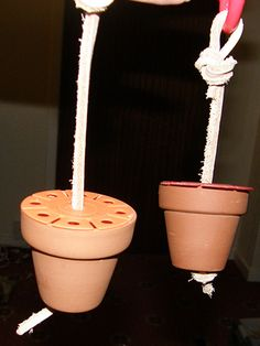 Turn a flowerpot into a foraging toy for your pet! Find a small terracotta flowerpot that does not have a glaze and cut a piece of leather string or natural rope to the length needed to hang the toy. Diy Rat Toys, Diy Hamster Toys, Diy Bird Toys, Gerbil, Sugar Glider Toys, Sugar Gliders, Chinchilla, Diy Parrot Toys, Parakeet Toys