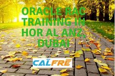 best oracle training institutes: Oracle RAC Training in Hor Al Anz, Dubai Search Engine, Dubai, Training, Fitness Workouts, Gym, Education, Race Training, Studying, Exercise