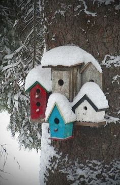 How to Build a Bird House | Just Imagine – Daily Dose of Creativity #howtobuildabirdhouse #buildabirdhouse