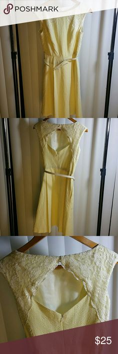 """Yellow A-frame dress Beautiful dress with yellow/white gingham-style pattern over later with delicate lace on shoulders and back. Thin white belt to accentuate waist. Darting for fitted look. Flat-lay measurements: 37"""" length, 13"""" waist (26"""" round), 13.5"""" armpit to armpit. Cotton/spandex with acetate lining. Great condition. Maggy London Dresses"""