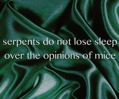 Serpents do not lose sleep over the opinions of the mice Slytherin Quotes, Slytherin Pride, Slytherin Aesthetic, Harry Potter Houses, Hogwarts Houses, Ragnor Fell, Warlock Class, Erich Von Stroheim, Dark Green Aesthetic