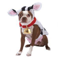 PetHalloween™ by Top Paw™ Cow Halloween Costume  - PetSmart $11.99
