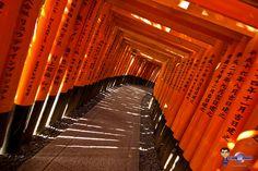 Week-end à Kyoto : entre Geisha, Maiko, Temples, Maccha, Setsubun et Shinkansen   Un Gaijin au Japon