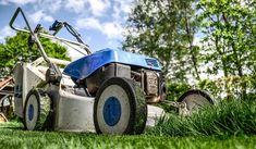 Informationen über den Gartenratgeber für Hobbygärtner und alle die aus einem Garten ein Stück Paradies für die eigene Erholung und für die Kinder schaffen wollen