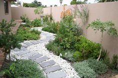 Fynbos Gardens | Dreamline Garden Consultants