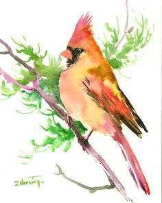 """Female Cardinal bird, 10"""" x 8"""", original watercolor painting, olive green wall art, scarlet red green painting  $24.00"""