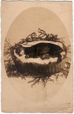 19th Century Post-Mortem Photography