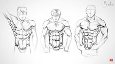 How to Draw Abs - Anatomy by Proko - Drawing Technique