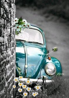 I need this outstanding volkswagen beetle Bmw Autos, Vw Vintage, Cute Cars, Jolie Photo, Vw Beetles, Old Cars, Color Splash, Dream Cars, Classic Cars