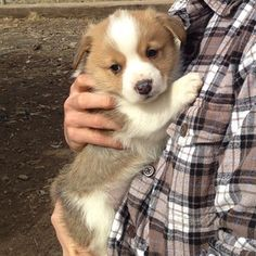 """That's when you know you have to Idina Menzel it and """"Let. It. Go."""" 