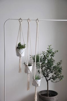 Set of 3 minimal modern macrame plant hangers. They are perfect for smaller pots and together create nice boho decor.  MADE TO ORDER in 1-3 business days  >> color: natural cotton/ecru/beige/linen  >> measurements: (this listing is for the macrame plant hanger only, does not include plant or pot)  pot diameter 11cm (4,3 in) height 10 cm (4 in)  +/- couple centimeters smaller pots will also fit with no problem, slightly larger also for bigger pots check my othe...