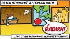 brain-based learning article illustration