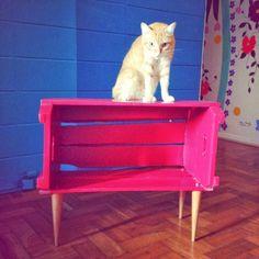 Mais um caixotinho de feira com upgrade le modiste saíndo! |