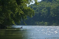 Sitting on a bend of the Meramec River, Robertsville State Park is an ideal spot for boating, fishing, hiking, picnicking, and camping!
