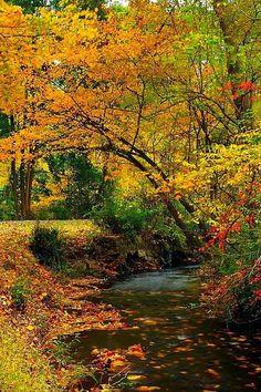 Natirar Park, New Jersey RP by DCH Paramus Honda Sales Associate Ladi Shehu http://ladi-shehu.dchparamushonda.com