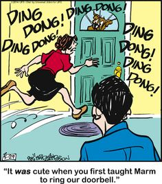 Marmaduke: May 2014 Funny Animal Pictures, Funny Animals, Animal Pics, The Jersey Devil, Dog Comics, Cartoon Dog, Calvin And Hobbes, Losing A Pet, Dog Memes