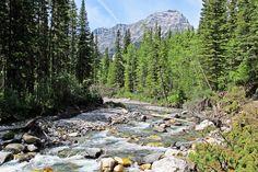 #hiking Ribbon Creek, Kananaskis, Alberta   #hikingwithbarry