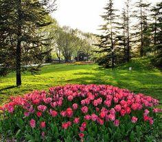 Bursa'da çocuklarınızın koşuşturması için harika bir mekan...Botanik park Bursa
