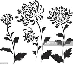 View top-quality illustrations of Traditional Chinese Painting Chrysanthemum. Find premium, high-resolution illustrative art at Getty Images. Flower Silhouette, Silhouette Art, Art And Illustration, Botanical Illustration, Chinese Painting, Chinese Art, Crisantemo Tattoo, Chrysanthemum Drawing, Chrysanthemum Chinese