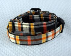 Halloween plaid collar.
