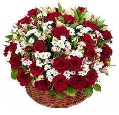 Same day funeral flowers delivery in Greater Metro Manila. Send funeral flowers to Philippines. We got a great selection of sympathy flowers for this delicate moment Rose Delivery, Flower Delivery, Red Rose Bouquet, Flower Bouquet Wedding, Send Roses, Online Flower Shop, Rose Arrangements, Sympathy Flowers, Purple Orchids