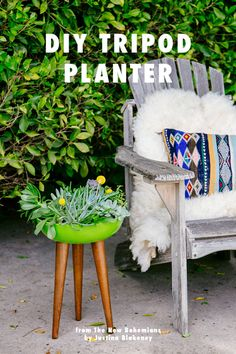 Using plants in your home & DIY planter