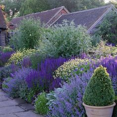 Best Photos english garden cottage Suggestions Gardener is my favorite interest for as long as I can remember. Back Gardens, Outdoor Gardens, Lavender Garden, Purple Garden, Design Jardin, Garden Architecture, English Architecture, Garden Borders, Garden Cottage