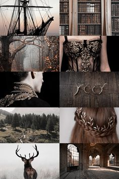 """skcgsra: """"a song of ice and fire: house baratheon """"""""ours is the fury"""" """" Badass Aesthetic, Witch Aesthetic, Aesthetic Collage, Character Aesthetic, Aesthetic Photo, Aesthetic Pictures, Story Inspiration, Writing Inspiration, Character Inspiration"""