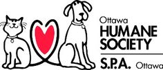Connect with us on social media in July and we'll make a donation to the Ottawa Humane Society. Like us on Facebook and we'll donate $0.50, or follow us on Twitter and we'll donate $1!