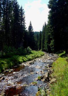 River Black Pockau, Germany