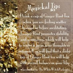 magickal, tip, witch, witchy, book of shadows, tea, herbalist, nature, healing, energy, botanical, focus, meditation, balance, ginger, root, stability, centered, correspondence, properties, magick, meanings, metaphysical, occult, white, knowledge www.facebook.com/...