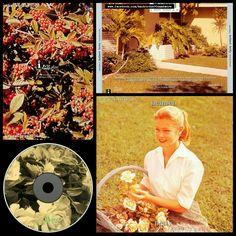 #HappyAnniversary 23 years #Helmet #Betty #album #alternative #metal #noise #rock #post #hardcore #music #90s #90smusic #90salternative #backtothe90s #JohnStanier #HenryBogdan #RobEchevarria #PageHamilton #AndyWallace #ButchVig #TRay #90sband #90salbum #90sCD #backtothenineties #CD #US #1994