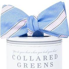Catalina Bow Tie Blue