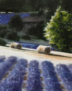 Naomi Tydeman RI, Lavender Farm, Provence
