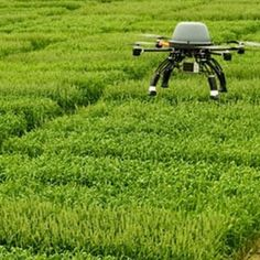 UAVs and Precision Agriculture Drones (UAVs) and Agriculture Farming Technology, Drone Technology, Technology World, Medical Technology, Energy Technology, Precision Agriculture, Latest Drone, Drone For Sale, Remote Sensing