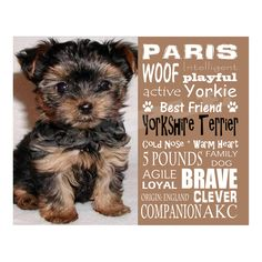 Yorkshire Terrier - Personalized 8x10 Unframed Dog Typography Art Photo
