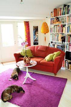 Colorful room in old beautiful house.