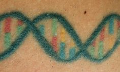 Harvard Prof's tattoo of DNA molecule that encodes his wife's initials.  ♥