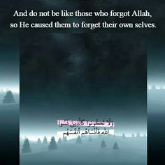 Quran  -  قرآن