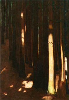 Color & Light - Hans Emmenegger - Spruce Forest - 1930