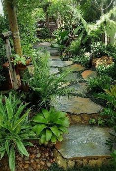 26 Perfect Side Yard Garden Design Ideas And Remodel. If you are looking for Side Yard Garden Design Ideas And Remodel, You come to the right place. Here are the Side Yard Garden Design Ideas And Rem. Amazing Gardens, Beautiful Gardens, Famous Gardens, Side Yard Landscaping, Landscaping Ideas, Tropical Backyard Landscaping, Natural Landscaping, Florida Landscaping, Tropical Garden Design
