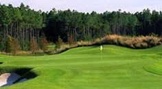 The Conservatory Course in Palm Coast, FL Florida Golf Courses, Best Golf Courses, Golf Course Reviews, Palm Coast, Conservatory, Travel, York, Live, Places