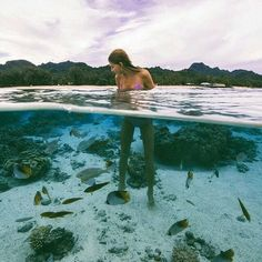 over and under water