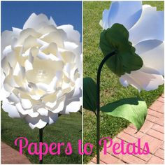 Custom and made to order free standing giant paper flowers on stems. This flower is on a 4ft tall stem and can be custom made in any color. Please contact me before you purchase to discuss colors and size options as well as shipping. Thanks so much for stopping by