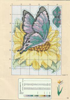 Butterflies 4/5
