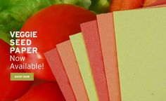 Order sheet of quality Veggie Plantable Seed Paper for crafting projects, invitations, packaging and more!