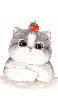 Obtain this picture Massive face hand painted cat, Drawing, Illustration, PNG Illustration without spending a dime. Pngtree supplies tens of millions . Hello Kitty Drawing, Cute Cat Drawing, Cat Face Drawing, Drawing Art, Cartoon Drawings, Animal Drawings, Cute Drawings, Cartoon Cats, Cartoon Illustrations