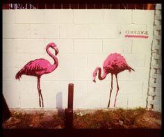 graffiti flamingo - Google zoeken